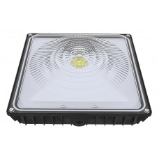 35W LED Canopy Light 5000K